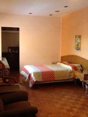 Habitación amplia en Nuevo Polanco - Ciudad de México - House
