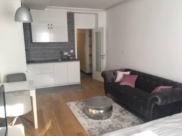 Modern studio apartment Banjaluka