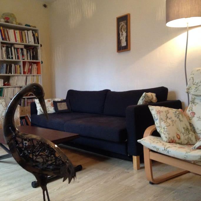 Salon cozy au RDC / The living room