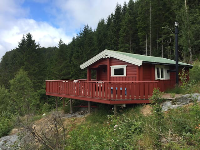Small cabin with new standard and great view