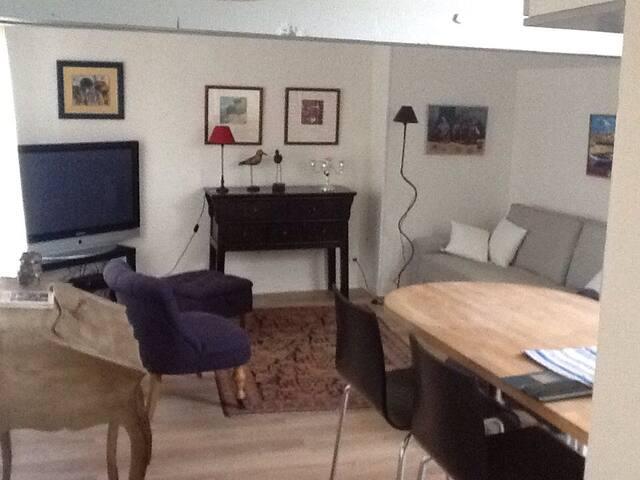 Appartement de charme ,hyper centre