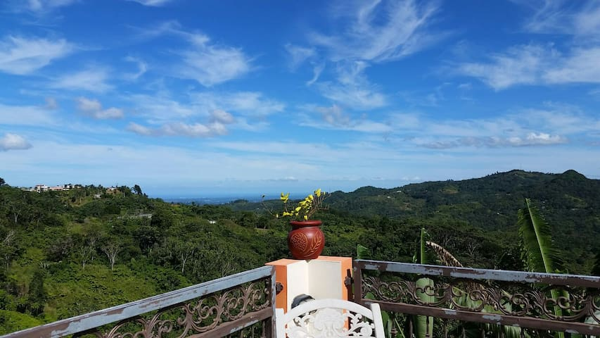 MountainSpot close to coffee plant. - Jayuya - Apartment