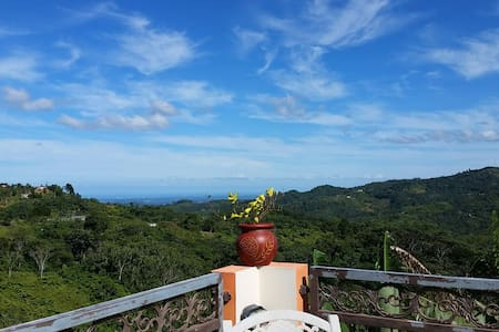 MountainSpot close to coffee plant. - Jayuya