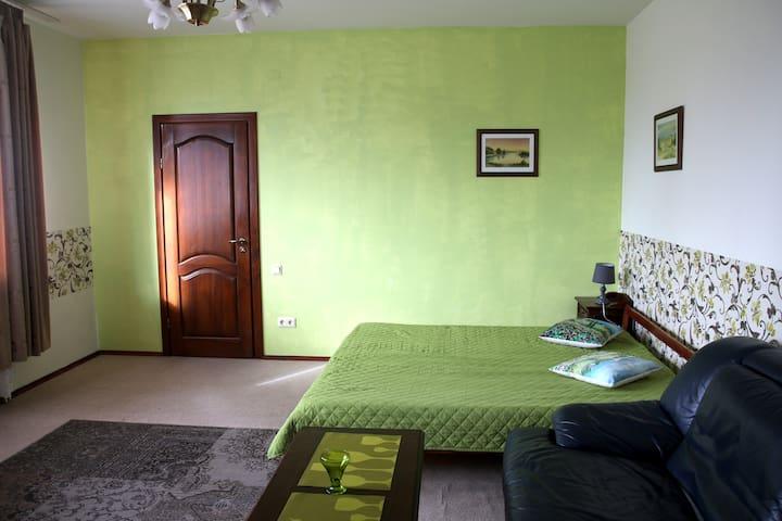 one bedroom apartment in Klaipeda - Klaipėda - Apartment