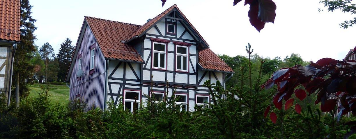 Harzhaus Schneewittchen im Oberharz bis 4 Personen - Sorge - Leilighet