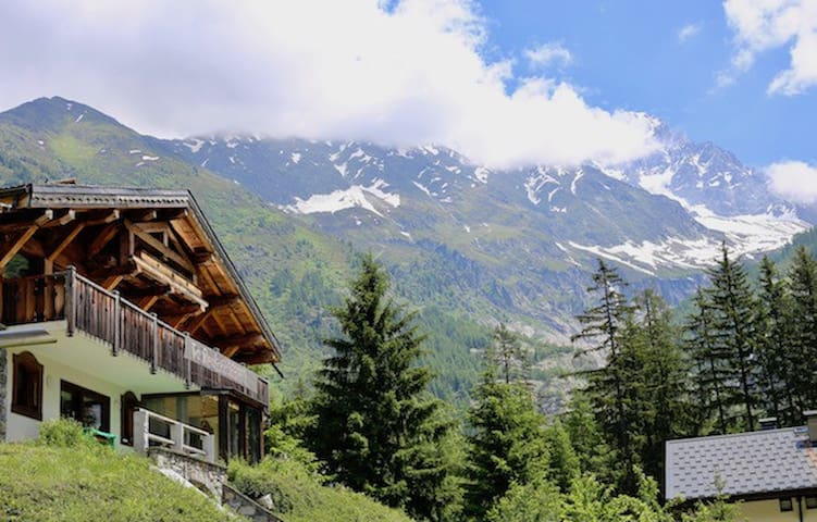 Modern Apartment 50 meters from Grand Montets Lift