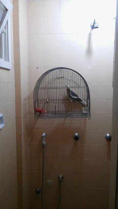 Banheiro do quarto de empregada