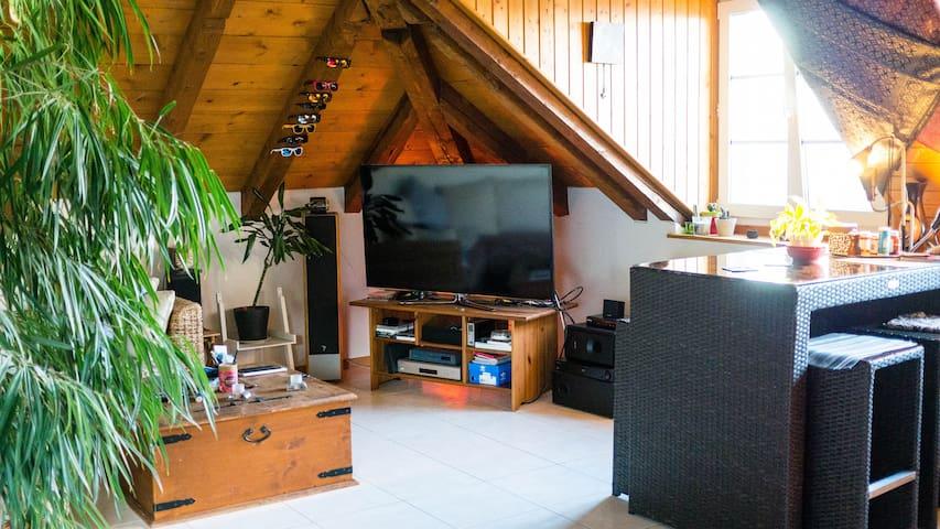 Grand écran 65' / + de 200 chaines tv