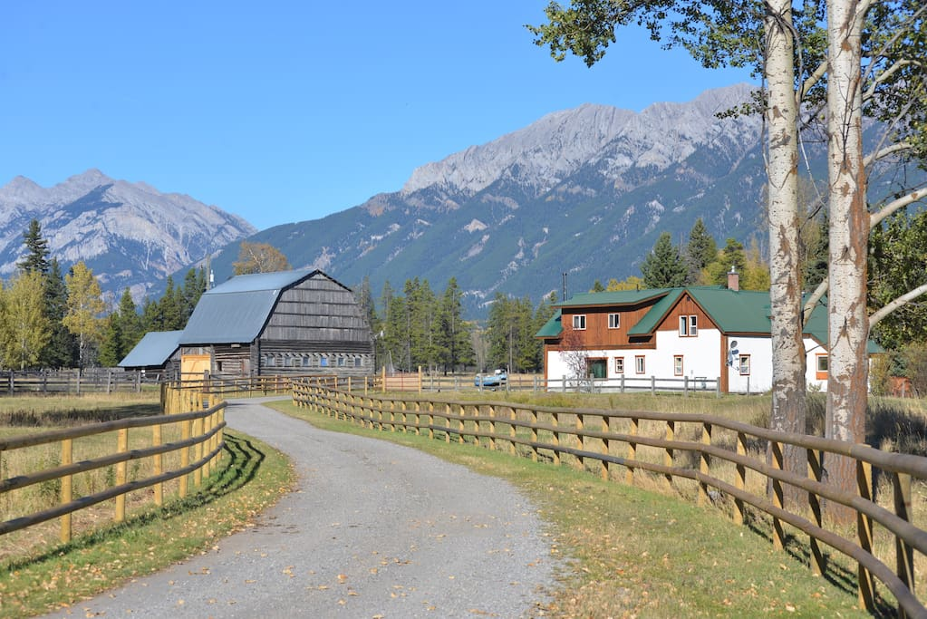 90 Acre Ranch On Elk River Canada Farm Stays For Rent