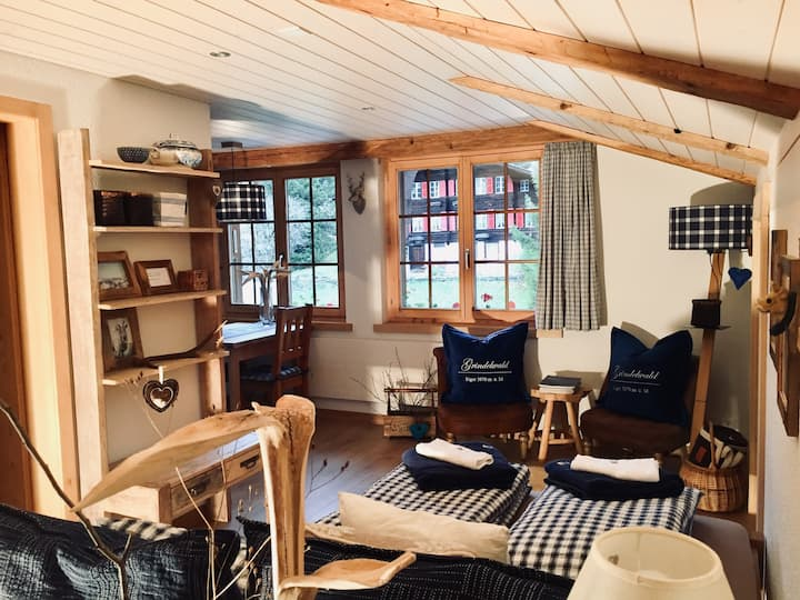 Apartment JUNGFRAU in the heart of Grindelwald