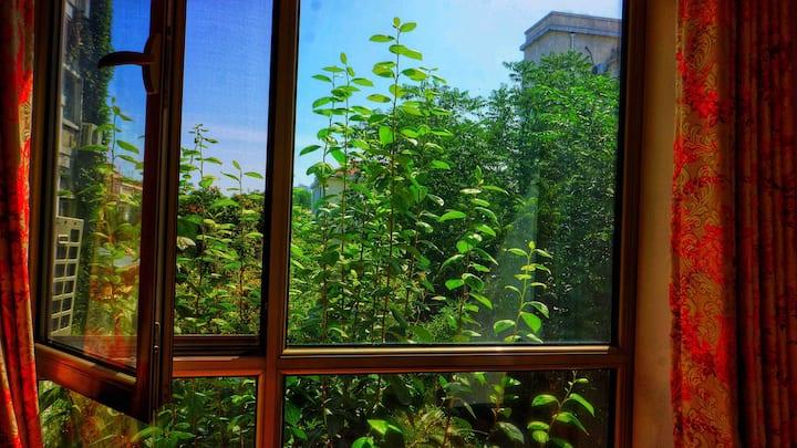 远望鸟巢森林北京小院墅屋Bird Nest North forest Beijing home O2