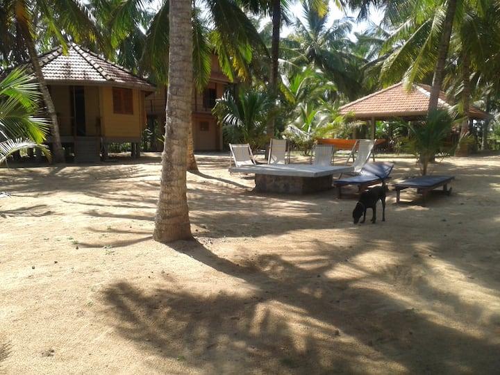 "Mamboz Beach Cabanas - ""Bimyo"""