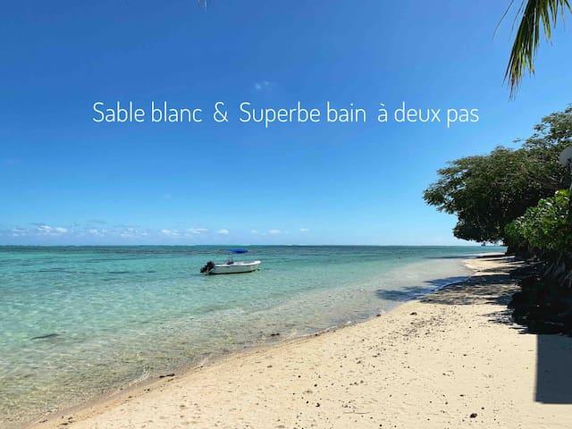 Studio Moorea Côté mer, plage à 2 pas, Free wi-fi