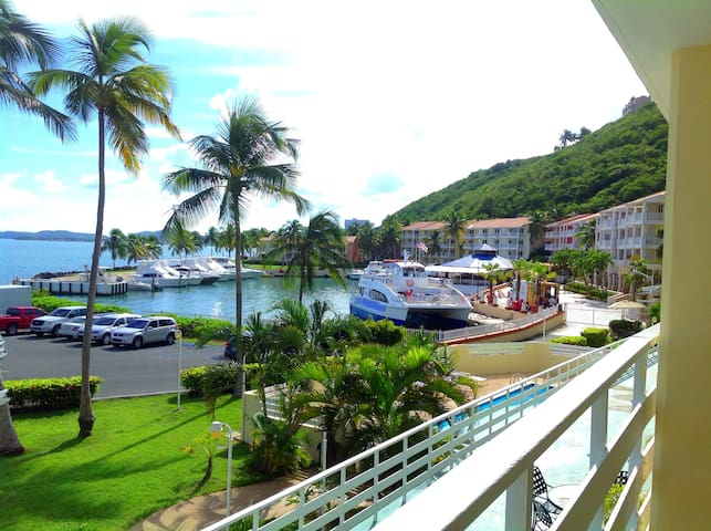 Waterfront Next to El Conquistador Resort Marina!