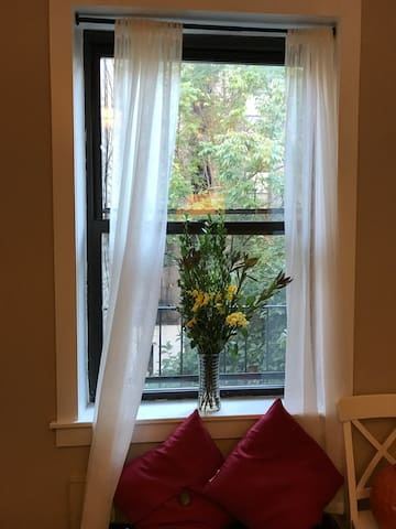 NYC Oasis - New York - Apartment