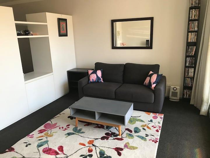Camperdown apartment near RPA Hospital