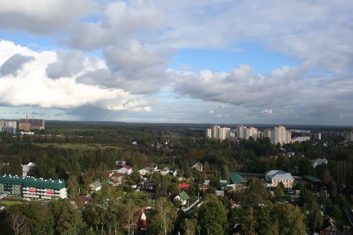 Двухместный Sky apartment - Новое Девяткино - Apartment