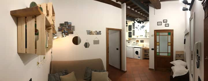 Homey Apartment in the heart of Tuscany