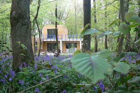 Maison sur grand terrain au coeur du bois de Cise