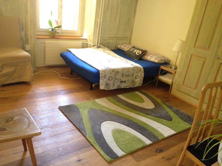 Central City Location, Quiet Area,by the park