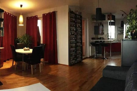 Spacious flat within easy reach of city centre - Praha
