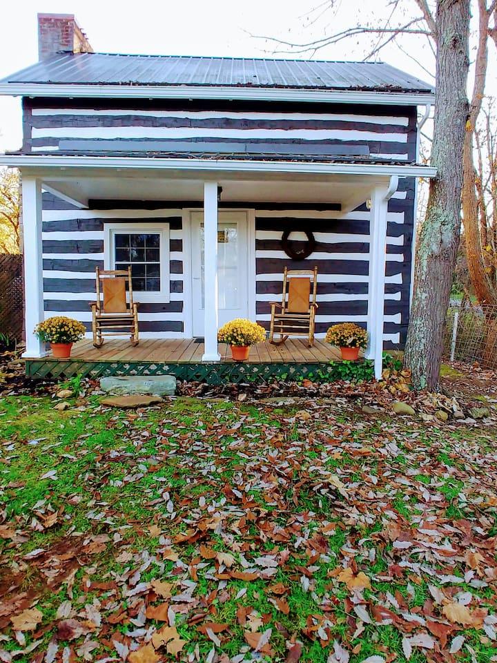 A cozy Cabin in all Seasons!