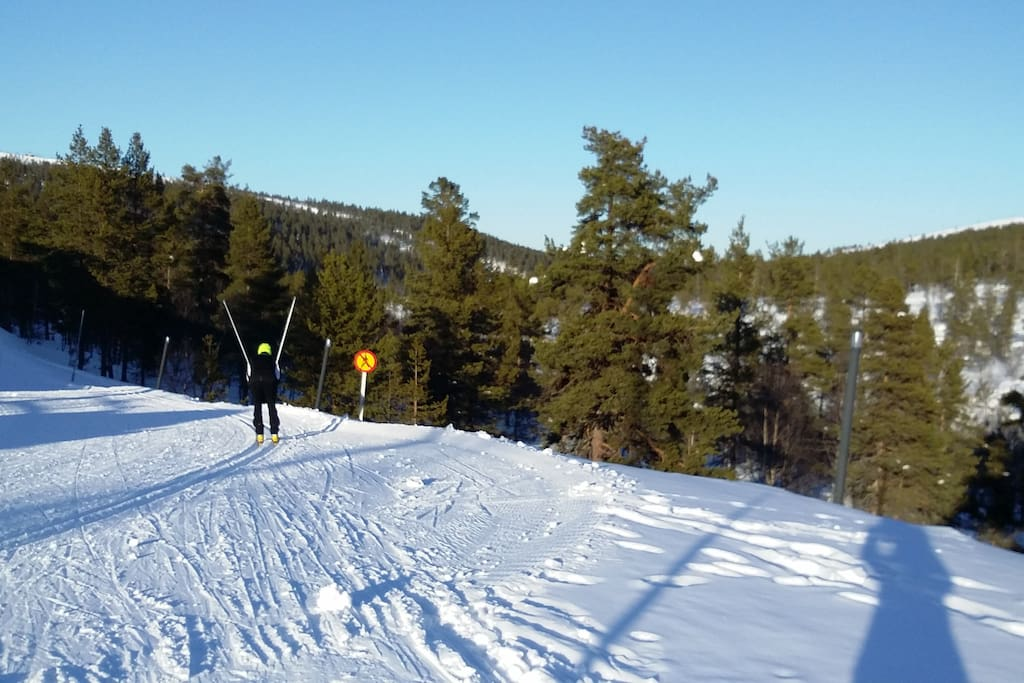 Hiihtoladut Cross-country skiing