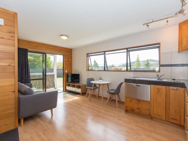 Wanaka Wonder - Studio - Wanaka - Appartement