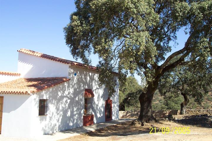 Cortijo La Umbría- Guest House - Cortegana - Casa