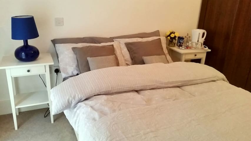 Large room with private bathroom - London  - アパート