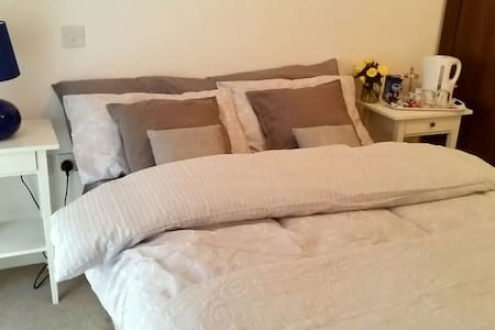 Large room with private bathroom - London