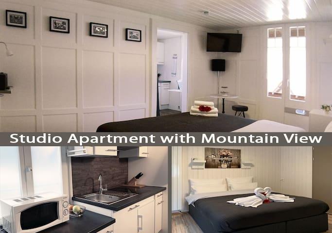 Chalet Maria Interlaken - Swiss Apartment No.2