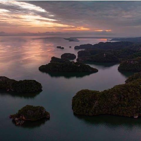 Parc National Los Haitises, découvrez ces mangroves, les espèces d'oiseaux, les grottes...