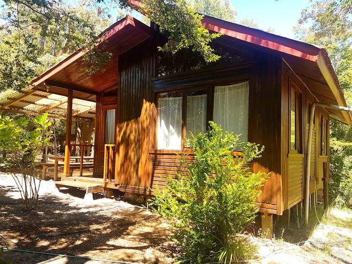 Cabaña en bosque nativo 5 min de centro Pucón 5 C