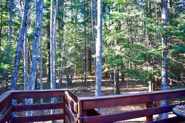 Our back deck overlooks the beautiful White Mountain Forest!