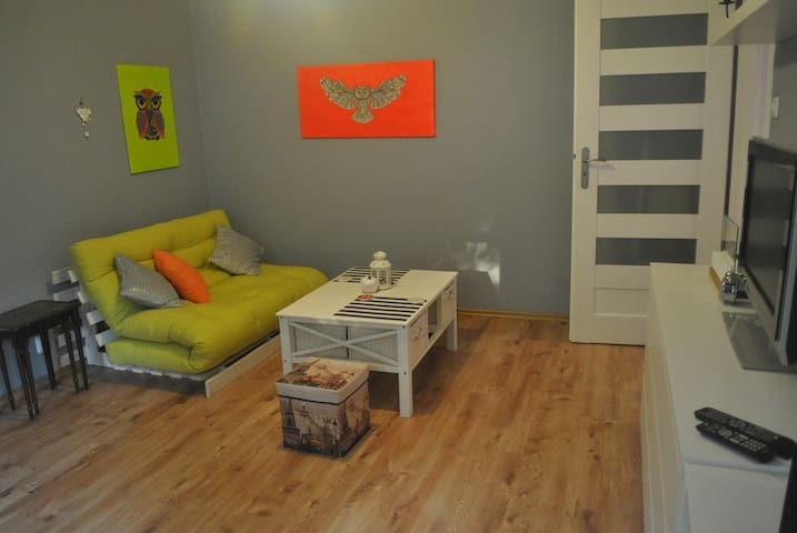 Apartament Fraszka 44m (2 pokoje)
