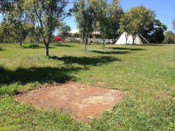 'Guunuwa' tent site
