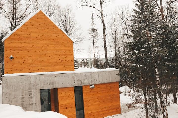 NEW-Scandinavian Lodge With lake view