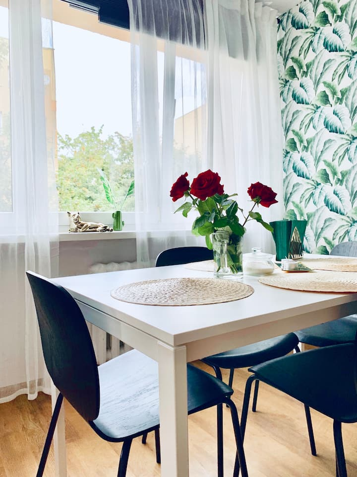 Apartament, Legnica 42m2 ul. Piekarska 13 Delux 4