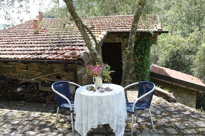 Oltre Po, rust, olijven en sterren - Apricale - House