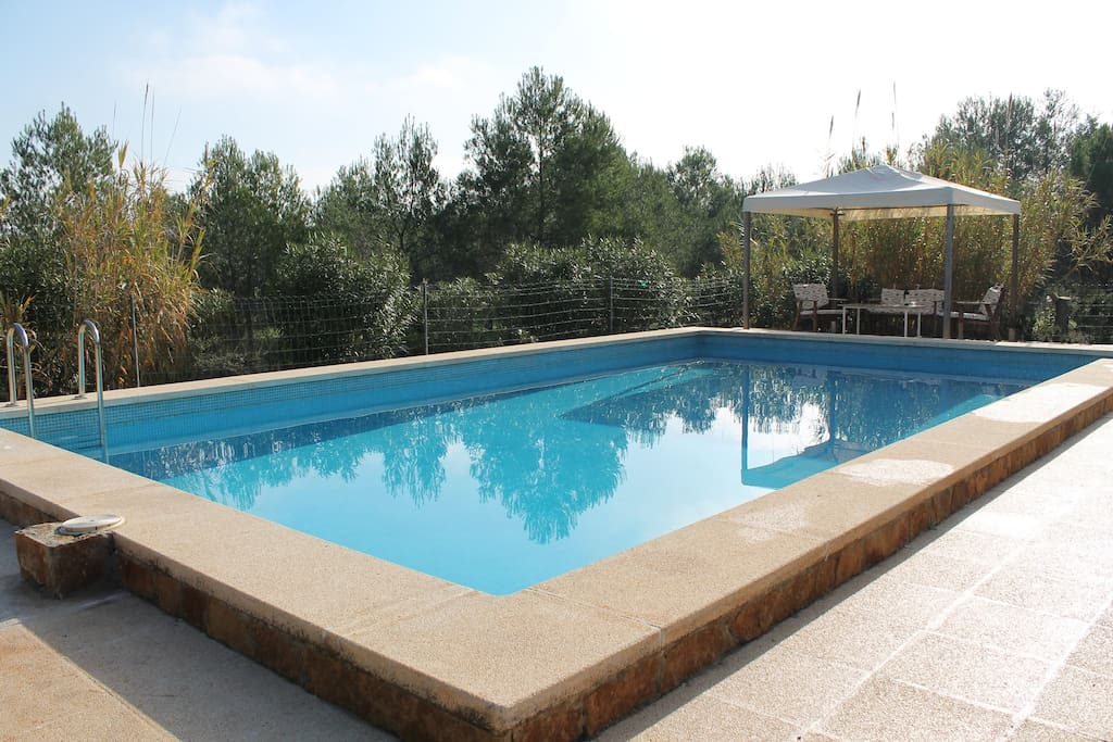 Pool 10 X 5