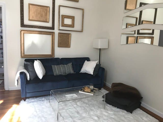 Pretty 1 bedroom apt, Williamsburg/ Females only