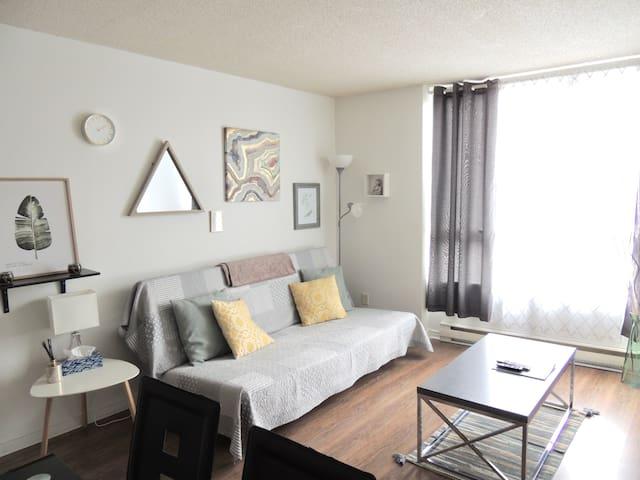 Elegant downtown suite * Parking options