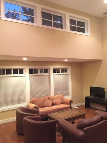 Nice living room, great for family entertainment
