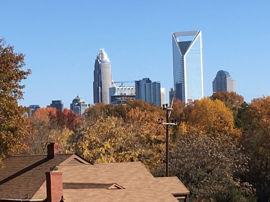 Charlotte Skyline from back yard