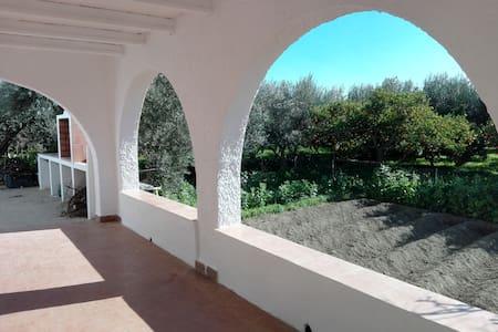 El cortijo de la abuela (entre naranjos) - Benahadux - Hus