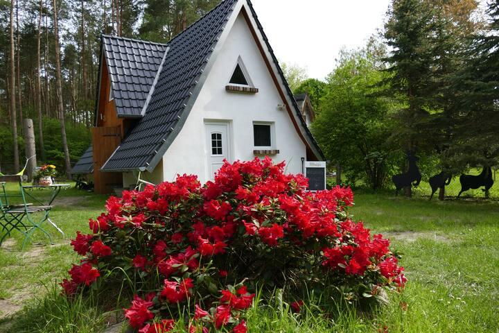 Uriges Waldhaus