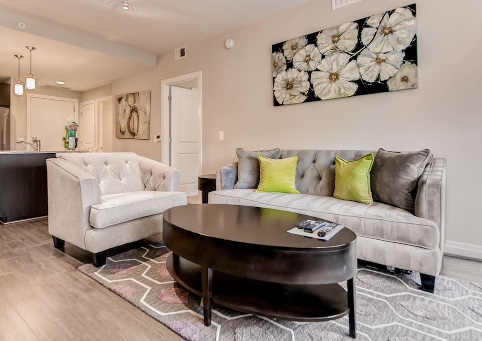 Luxurious 1 Bedroom Reston Apartment Apartments For Rent In Reston Virginia United States