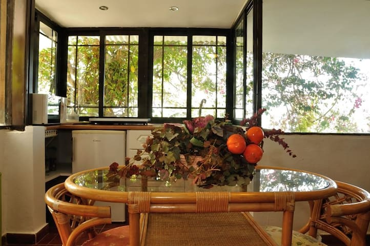 Tenerife Sur Costa Adeje, casa jardín y frutales - Adeje - Huis