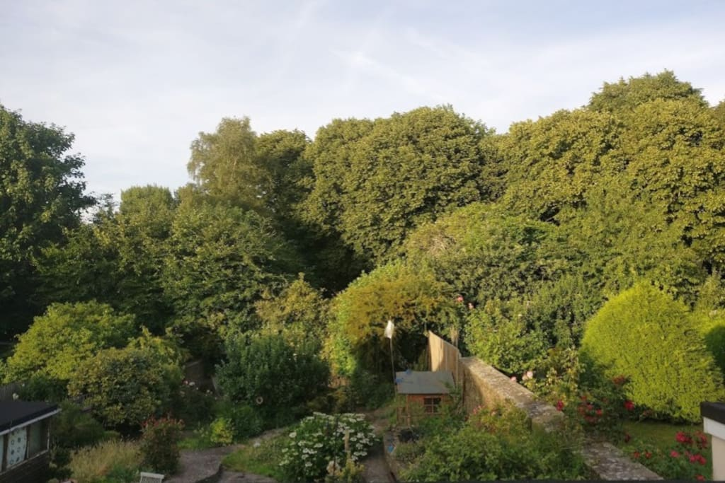 back garden view from bedroom